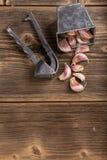 Stampa di aglio Fotografie Stock Libere da Diritti