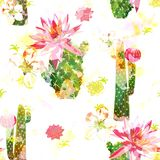 Stampa sbiadita Colourful con il cactus floreale illustrazione di stock