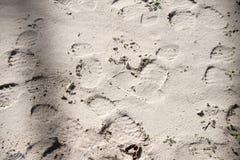 Stampe del pattino nella sabbia Immagine Stock Libera da Diritti