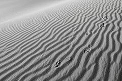 Stampe del piede di esseri umani nella sabbia immagini stock libere da diritti