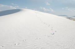 Stampe del piede nelle dune bianche di San Fotografia Stock