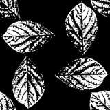Stampe delle foglie degli alberi Reticolo senza giunte Immagini Stock