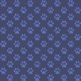 Stampe di sguardo fangose della zampa in blu medio Immagine Stock Libera da Diritti