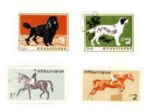 Stamps Stock Image