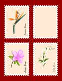 Stamps with flowers. Stamps with three exotic flowers, one blank, isolated Royalty Free Stock Photos