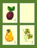 Stamps with fruits, cdr vector. Stamps with three fruits, one blank, isolated, vector format stock illustration