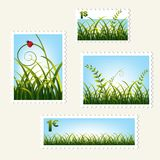 Stamps with grass,  Stock Photography
