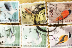 Stamps printed in Hong Kong Stock Images