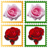Stamps with roses Royalty Free Stock Images