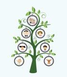 stamträd Royaltyfri Bild
