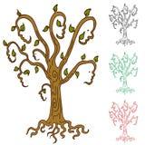 stamträd Royaltyfri Fotografi