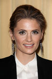 Stana Katic Royalty Free Stock Images