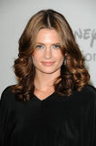 Stana Katic Stock Photos