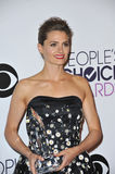 Stana Katic Royalty Free Stock Image