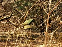 Stand alone bird house Stock Photography
