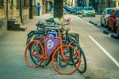Stand for bicycles. Bicycles placed on the sidewalk side of the street. Flowers. Street. Bicycle lane Stock Images