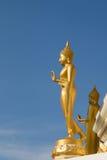 The stand buddha statue Stock Image