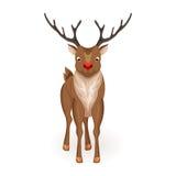 Stand cartoon reindeer Stock Photo
