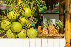 Stand with coconuts and pineapples Stock Image