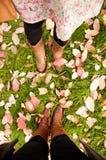 Stand de deux femmes sur le fond de lames d'automne Photos stock