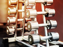 Stand with dumbbells in gym Royalty Free Stock Images