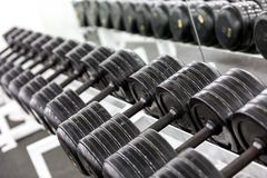Stand with dumbbells Stock Photo