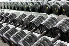 Stand with dumbbells Stock Photos