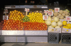 Stand för ny produce Arkivfoto