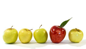 Stand out from the crowd... Shiny, red apple amongst smaller yellow apples. The concept is individualism, leadership and standing out from the crowd Stock Photography