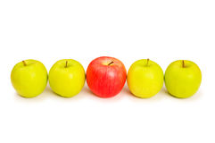 Stand out from crowd concept. With apples isolated on white Stock Photos