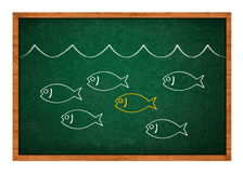 Stand out from the crowd. Simple drawing of a fish on a green chalkboard background stock illustration