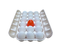 Stand out - egg 2. A unique egg in a carton isolated over a white background via a clipping path royalty free stock photos