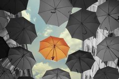 Stand out umbrella Royalty Free Stock Photo