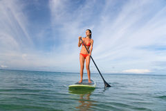 Stand up paddle board. Beautiful stand up paddle board woman Stock Images