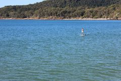 Stand Up Paddle Board Rider royalty free stock images