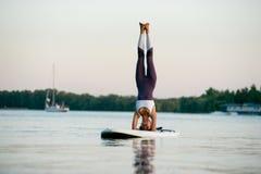 SUP young beautiful girl yoga meditation Stock Photography