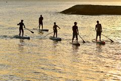 Stand up paddle boarding royalty free stock images