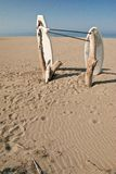 Stand up paddle boards. Velika Plaza, Ulcinj, Montenegro Royalty Free Stock Photo