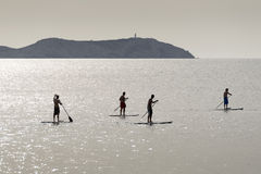 Stand up paddle surfers Royalty Free Stock Image