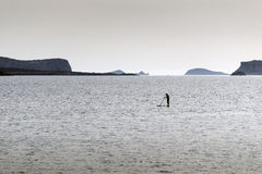 Stand up paddle surfers Royalty Free Stock Images
