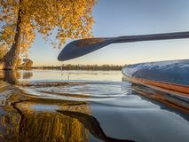 Stand up paddleboard on lake with fall colors Royalty Free Stock Photo
