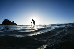 Stand Up Paddler Silhouette Stock Photography