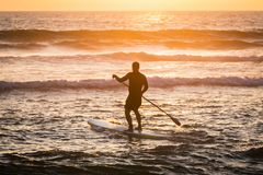Stand up paddler silhouette at sunset. Concept about sport, surf, vacations and people royalty free stock photography