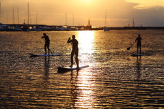 Stand-up paddler silhouettes at sunset. On the Baltic sea Royalty Free Stock Image
