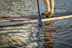 Stand up paddling abstract Royalty Free Stock Images