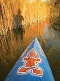 Stand up paddling on lake Royalty Free Stock Photo