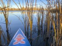Stand up paddling on lake Stock Photo