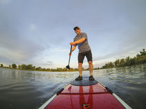 Stand up paddling. Mature male paddler enjoying workout on stand up paddleboard (SUP), calm lake in Colorado, summer Royalty Free Stock Photos