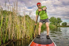 Stand up paddling through reed Royalty Free Stock Photo