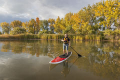 Stand up paddling (SUP). Senior male paddler enjoying workout on stand up paddleboard (SUP), calm lake in Colorado, fall colors Royalty Free Stock Photos